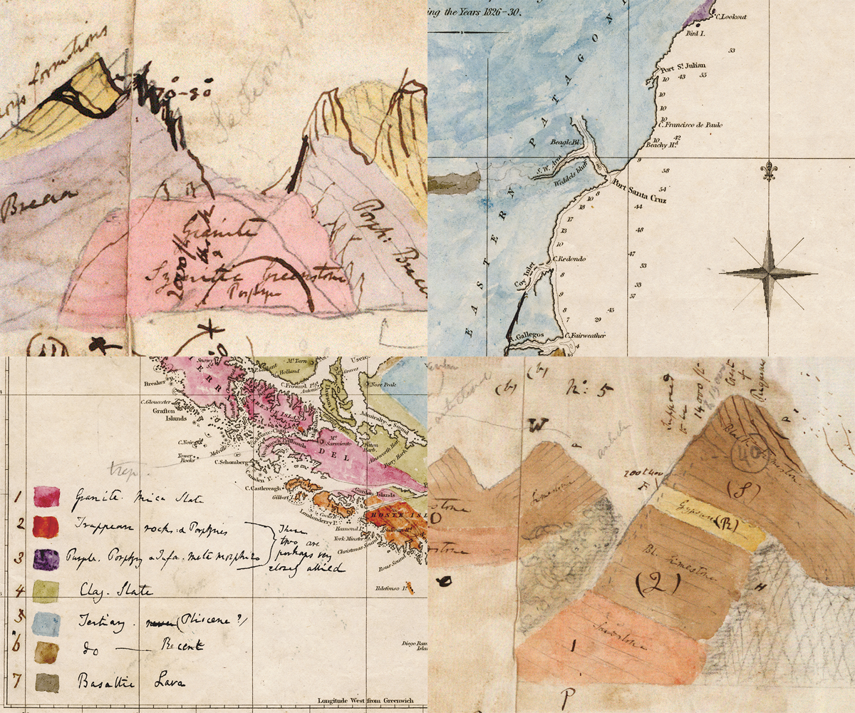 Some of Darwin's geological drawings