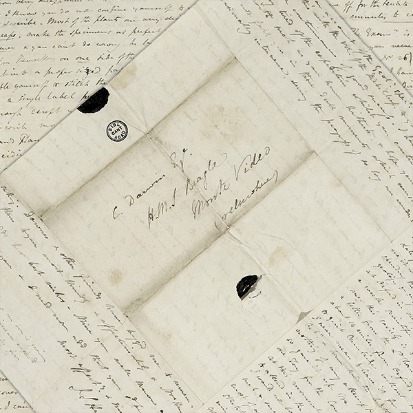 close up of letter