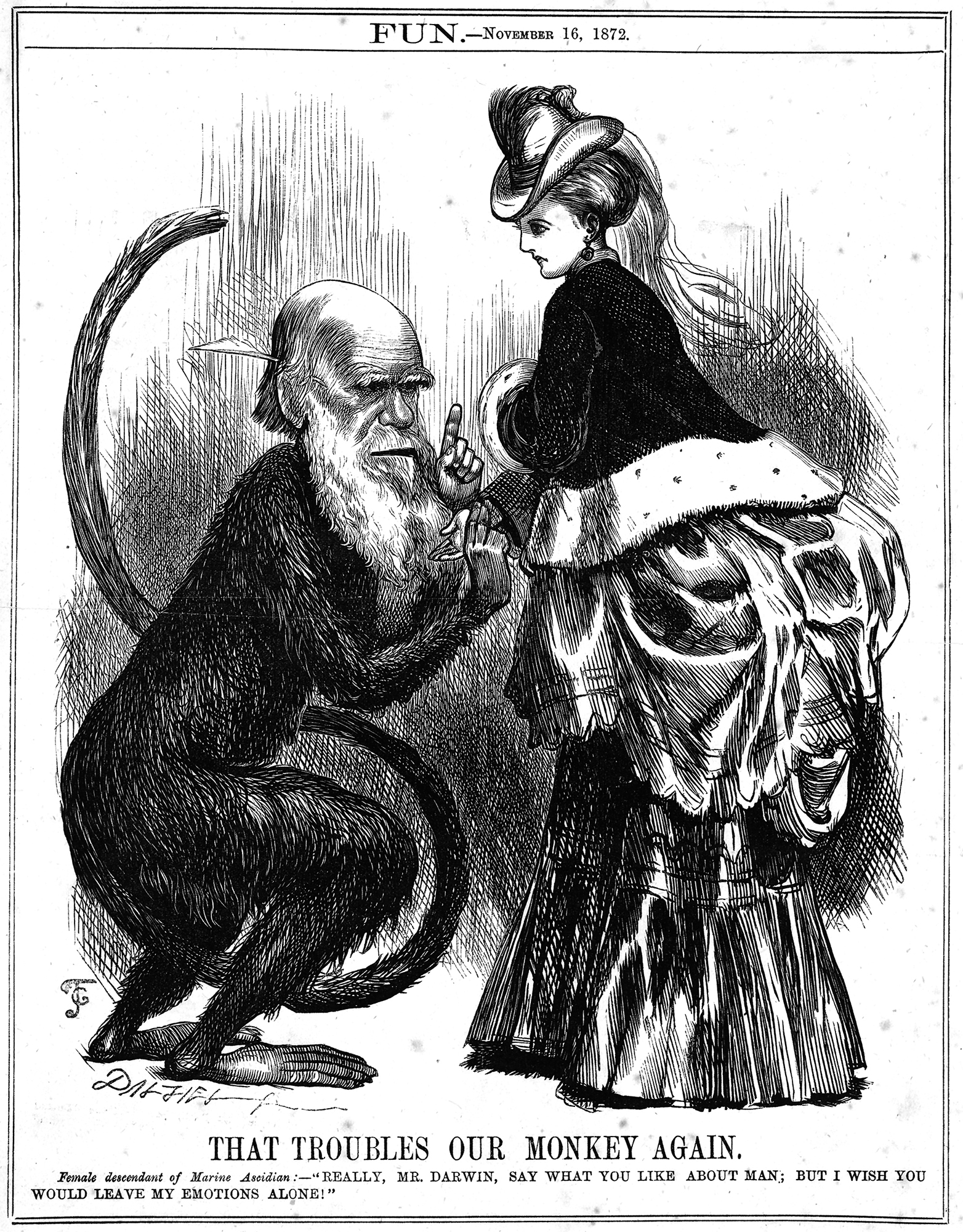 'That troubles our monkey again' caricature of Charles Darwin