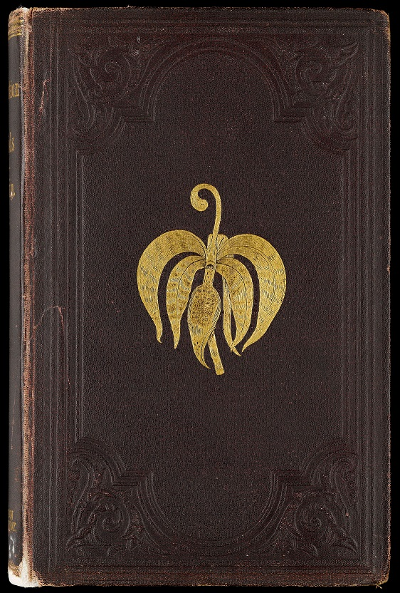Book cover of Orchids