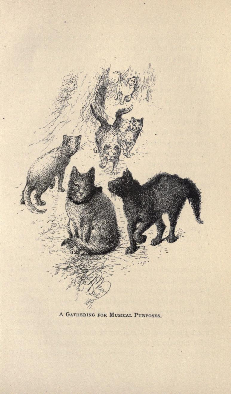 Those other animals by George Alfred Henty and Harrison Weir,  p. 127]
